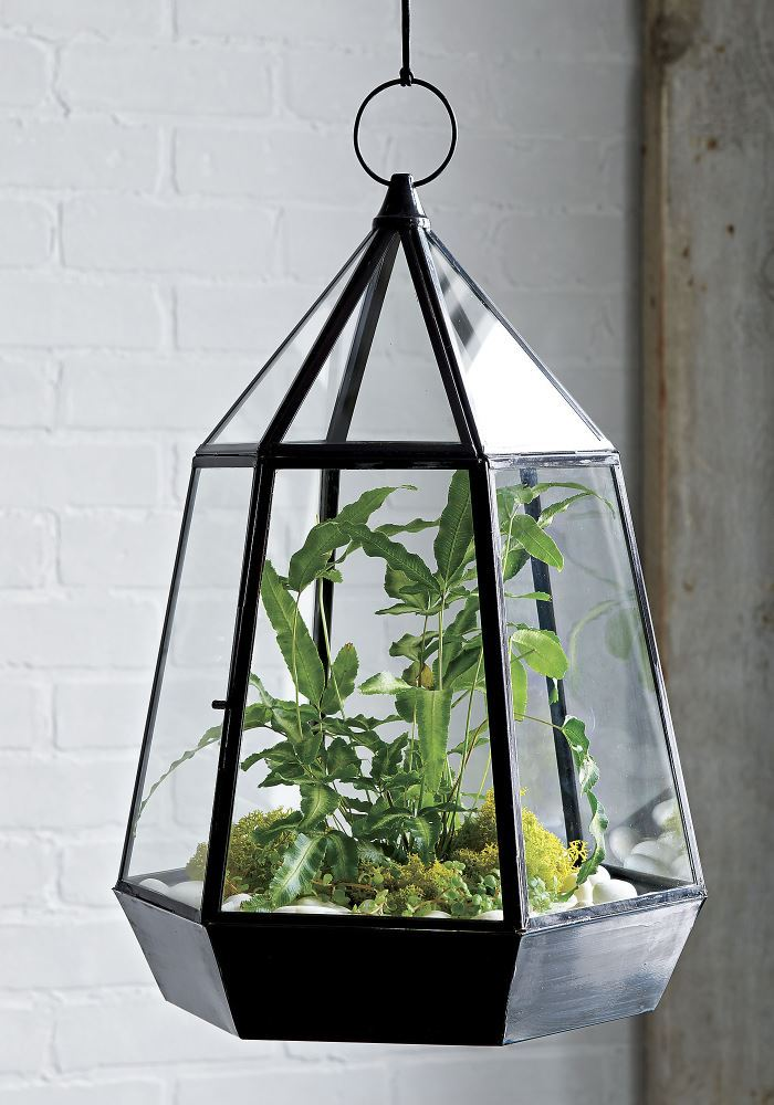 Framed in black oxidized brass, this geometric glass pyramid constructs a multifaceted view to succulents and objects of art inside. Display on the table or hang from top loop.