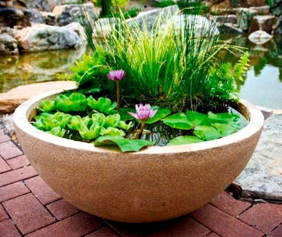 您想为您的小花园添加水景吗?如果是,那么在锅中创建一个池塘。找出这个DIY!