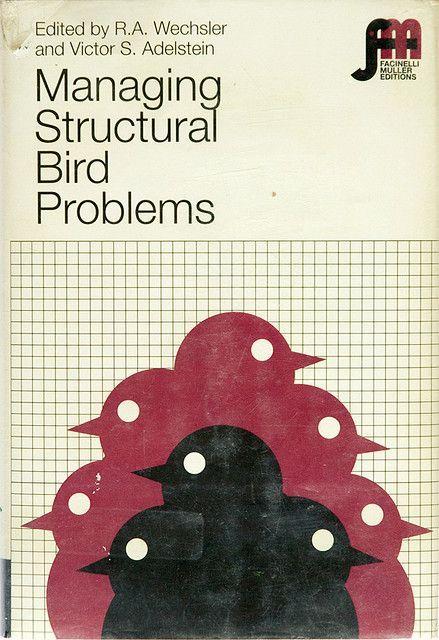 managing structural bird problems