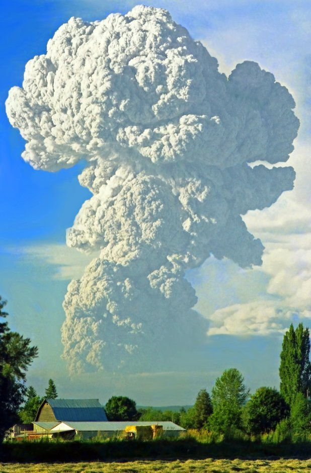 Mount St. Helens eruption on May 18, 1980, the deadliest and most economically destructive volcanic event in the history of the United States. Fifty-seven people were killed; 250 homes, 47 bridges, 15 miles (24 km) of railways, and 185 miles (298 km) of highway were destroyed ~ by Jim Cottingham