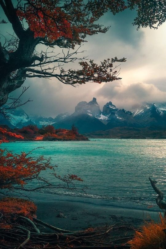 In the foothills of the Andes merveceranphoto
