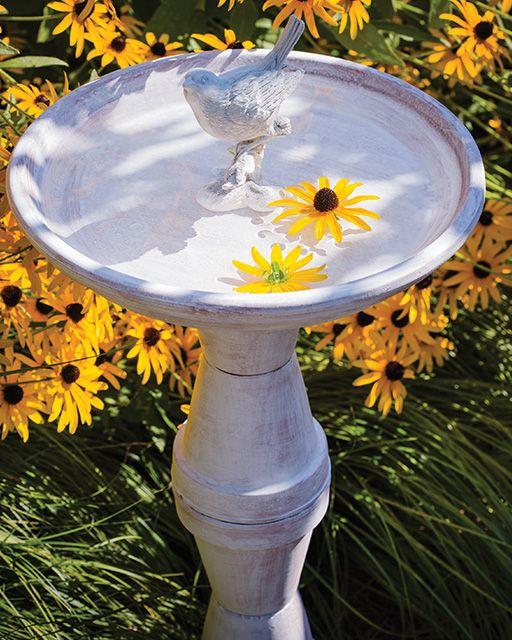花盆Birdbath赤土陶器