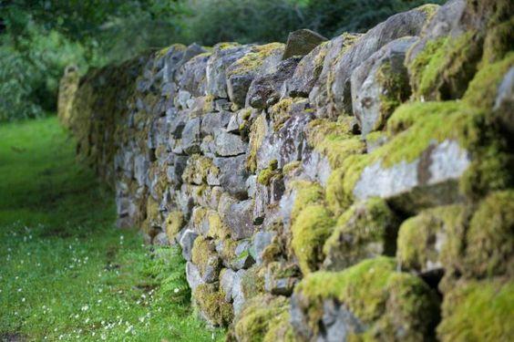 在山上建造道路时经常使用挡土墙。过了一段时间,他们可能开始恶化。我的任务是重建100英尺的石墙。