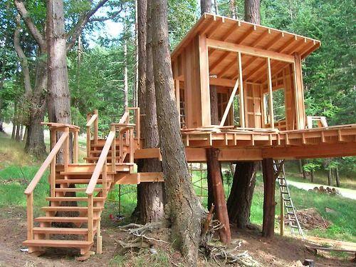 想要了解如何为孩子建造最好的树屋?这里是建立你自己独特的树屋的指示和计划。