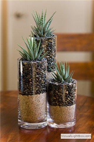 用这些易于DIY的多汁植物种植者在室内或室外布置你的家,你可以节省预算。