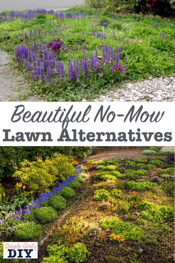 厌倦了在美丽的夏日修剪你的草坪吗?想要一种更环保,耐旱的草替代品吗?我分享了我用来替换我丑陋的草坪的过程,用漂亮而实用的无割草坪替代品。