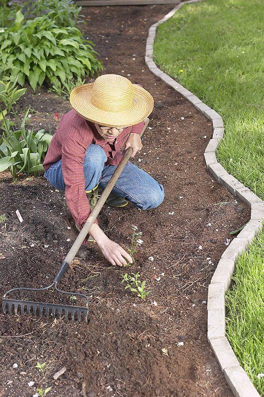 一种低维护的景观美化方法可以让您享受几个小时的享受而不是工作。旧农夫年鉴列出了创建低维护景观的技巧。