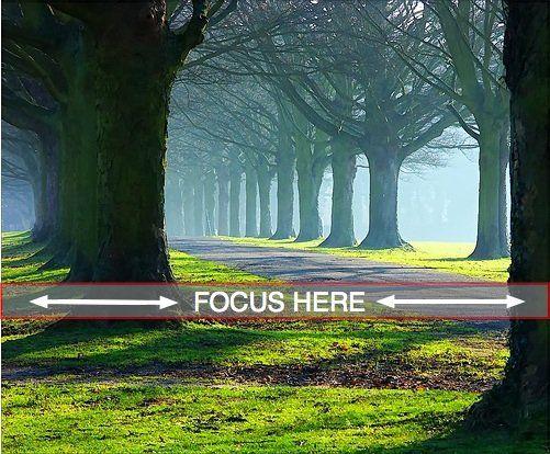 在拍摄风景照时,我应该在哪里关注?在拍摄典型的风景图像时,尽量保持尽可能多的图像清晰是正常的。这意味着选择一个小光圈(记住数字越大,实际光圈越小),以确保您最终获得...