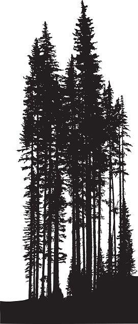 茂密的森林松树树线的矢量轮廓图。