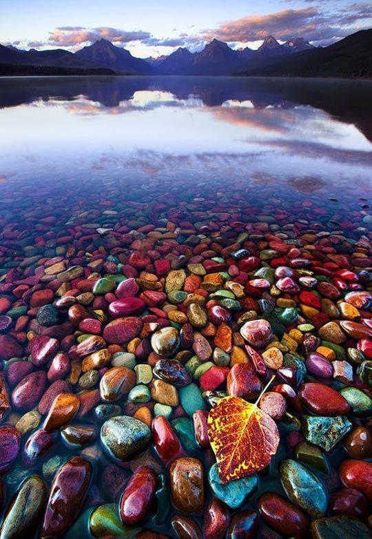 小卵石岸湖在冰川国家公园,蒙大拿