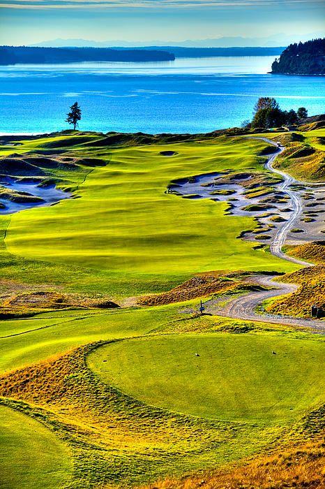 钱伯斯湾高尔夫球场第五洞 -  2015年美国公开赛