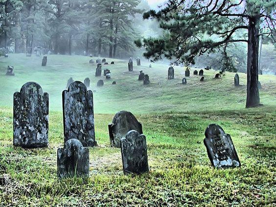 雾进入老墓地。