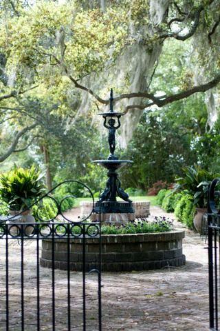 从南卡罗来纳州最近的花园摄影之旅中选择图像