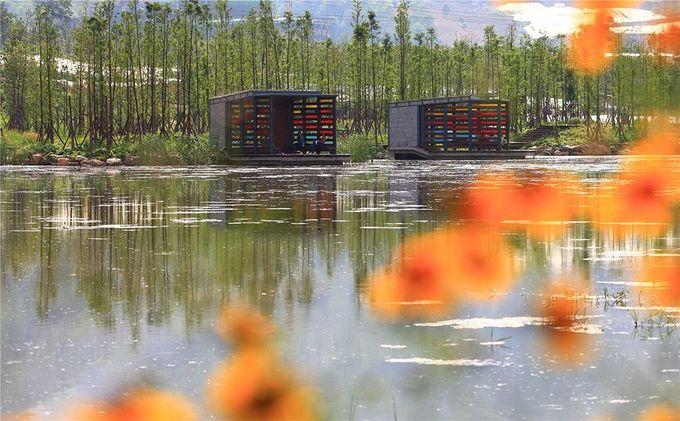 明湖湿地公园由Turenscape 06«景观建筑工程| Landezine