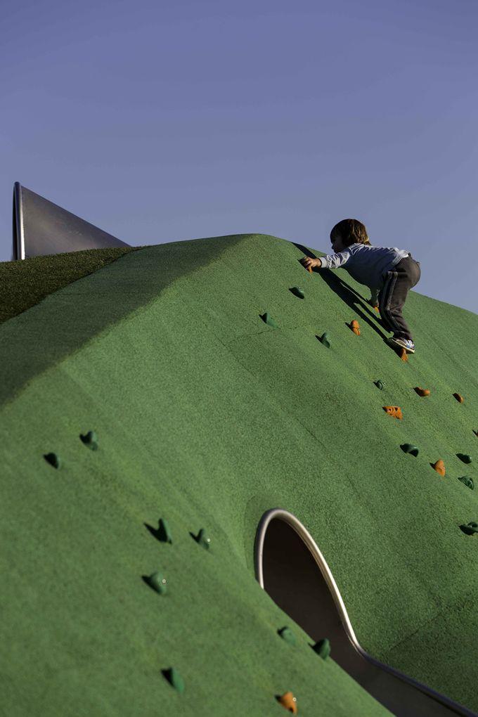 Blaxland Riverside Playground - JMD design. Photo by Brett Boardman