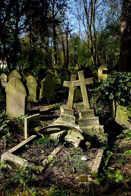 也许地球运动和破坏行为的结合导致了这些坟墓的状况