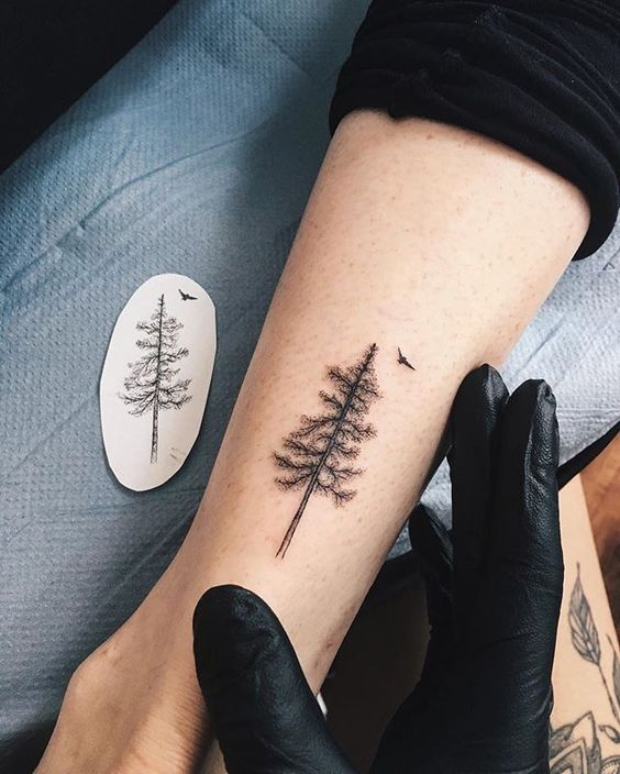 Emma🌲的小松树🌲️yg.tattooing@gmail.com#ygtattooing #gyachyaana #linework #dotwork #blacktattoo #tattoo #tattoos #tattooartist #uk #london #londontattoo #blackworkers #blackworkerssubmission #inkstinctsubmission #iblackwork #blacktattooart #blxckink# btattooing #darkartists #onlyblackart #igtattoogirls #flashworkers #tattoopins #tattooed #art #botanicalart #botanicaltattoo #sketch
