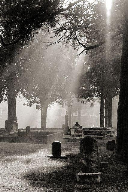 我正在去玛丽埃塔工作,我们住的酒店就在同一座墓地的街对面。我一天早上醒来,走过去拍了几张照片。这是我编辑和裁剪的黑白版本。 ISO-100,f / 2.8,1 / 400秒,19mm,奥林巴斯C2000
