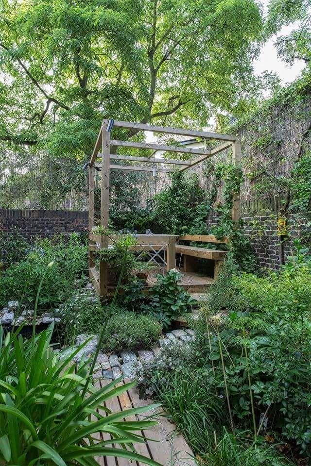 野生和自由花园,非常适合小型后院。