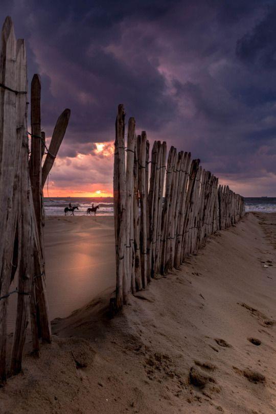 日落骑在沙滩上