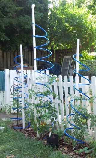 Tormato! Tomato Cage With Trellis and Nutrient Delivery System