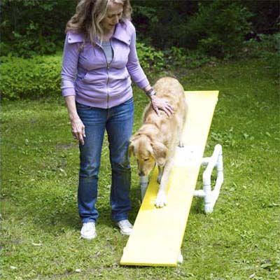 为您的狗建立这个易于组装的敏捷课程,让他看起来更快乐,更健康,更聪明