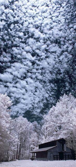 Winter Clouds. Winter Day. Winter Scene.