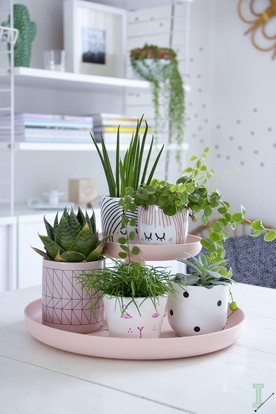 IDA室内生活方式:植物,植物,植物: