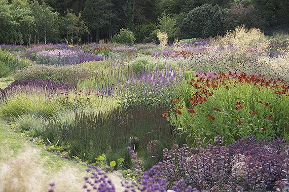 A Dream for Sale: Piet Oudolf * planten en siergrassen grote groepen *