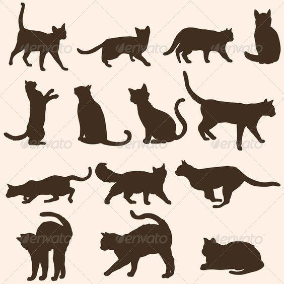 矢量轮廓的猫文件类型:jpg,eps