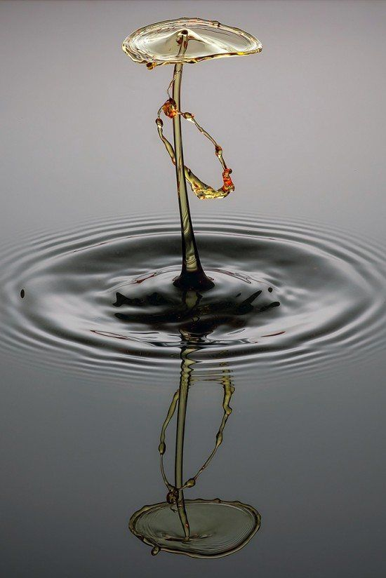 Perfection of Water Drops by Markus Reugels