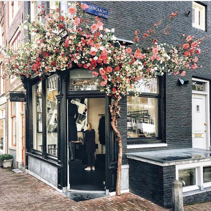 La Dress,阿姆斯特丹