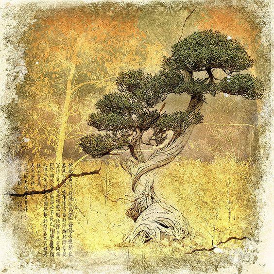 创建用于图层纹理的挑战#3:盆景从保罗大日本纹理破裂的墙壁阳光纹理日本文字刷黑曜石黎明