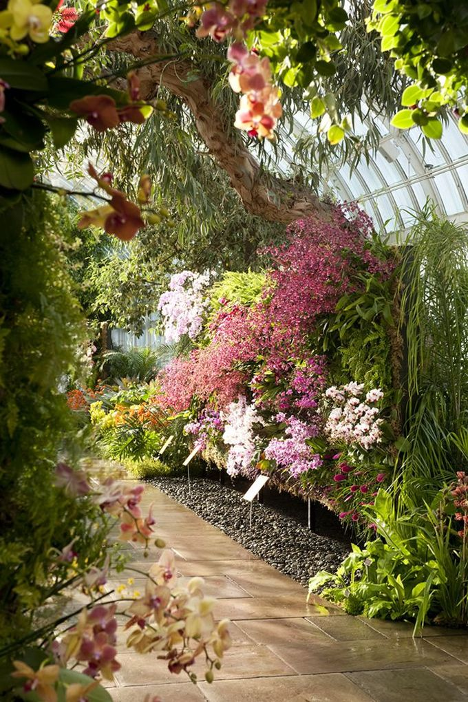 The Orchid Show: Patrick Blanc's Vertical Gardens at the New York Botanical Garden