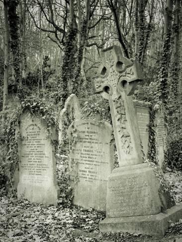 尺寸:24x18in摄影图片:海恩特盖特公墓,伦敦,英国乔恩阿诺德:主题