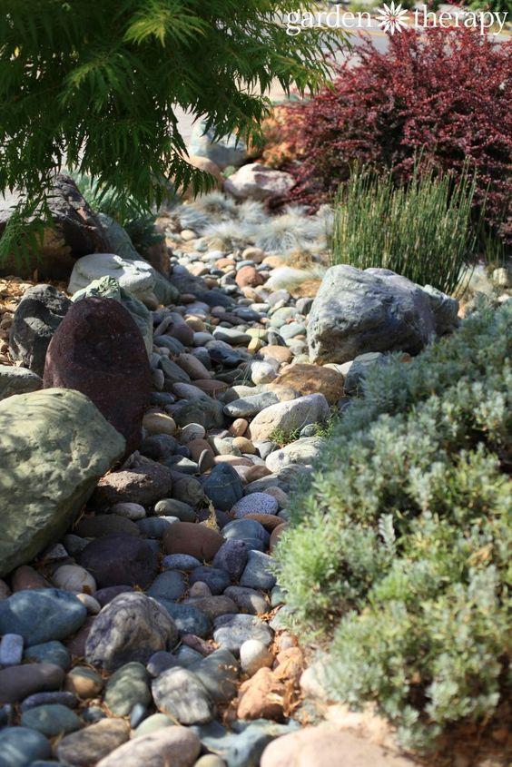 即使在干燥的气候或干旱环境中,您也可以种植植物,拥有花园,营造出一个美丽的环境。有许多美化干旱的选项。