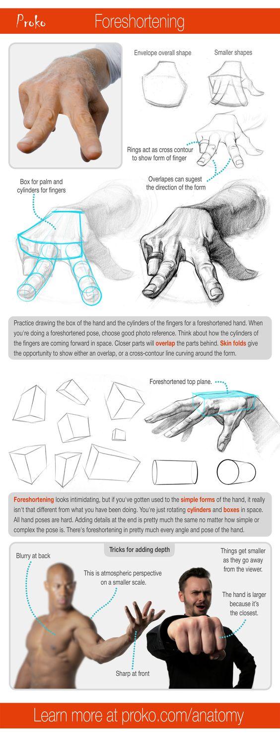 人体解剖学课程在图形绘制课程中,您学习了绘制图形的许多核心概念,但是如果您想从您的图形中抽取图形,那么您的训练并不完整。