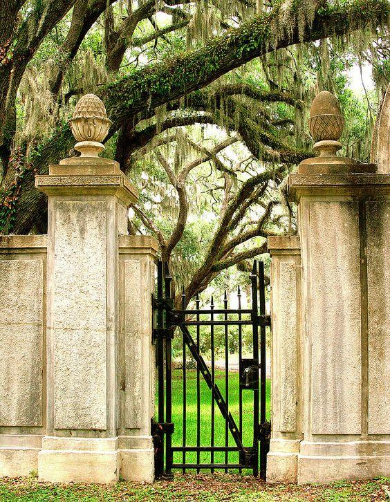 文德墓地Savannah Ga照片 - 文德墓地Savannah Ga Fine Art Print