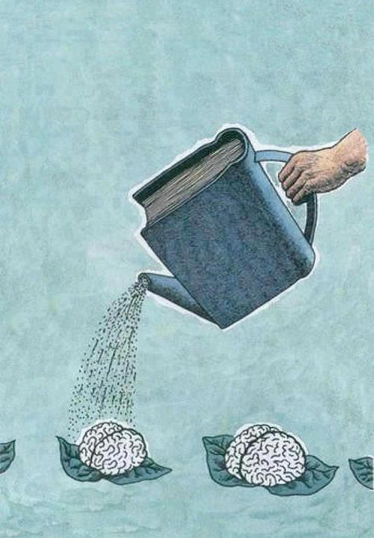 Voce aprende mais lendo um livro do que voce assistir TV