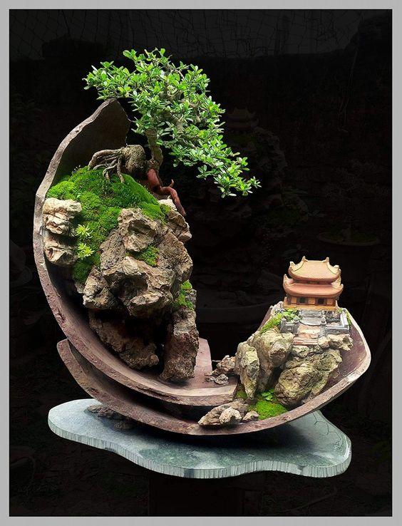 来自Naboria盆景的精彩盆景景观创作