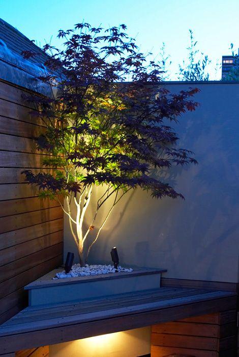 20梦幻花园照明理念 - 最佳的DIY理念