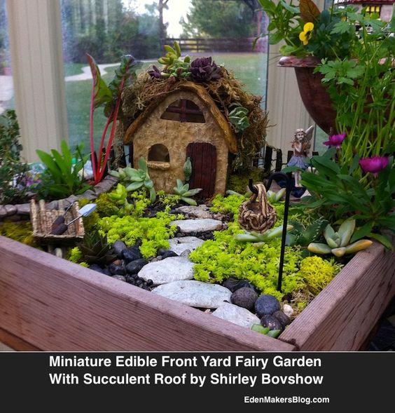 我把一个广泛的博客文章放在一起,展示了我在家庭和家庭展(Hallmark)上展示的微缩和仙女花园的照片之前和之后......