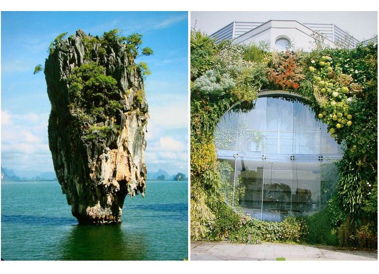 Gorgeous green nature and vertical gardens by Patrick Blanc
