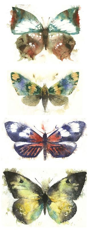 KO.35 butterflies moths 1 - giclee print from original watercolour