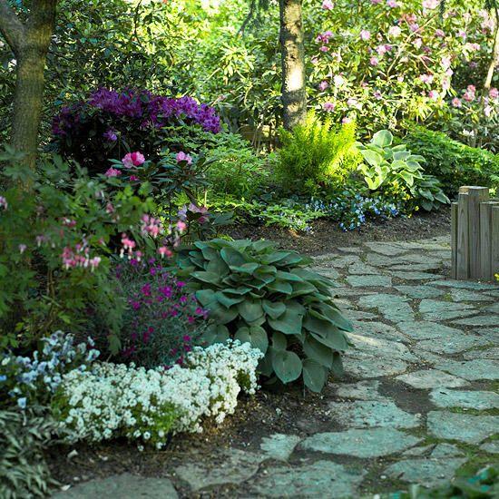 在景观边缘方面,您有很多选择。像砖一样的硬景观元素通常是房主的首选边缘,但植物也可以为花坛的前面提供美丽,绽放的焦点。在您的院子里尝试这些最好的植物之一为景观边缘。