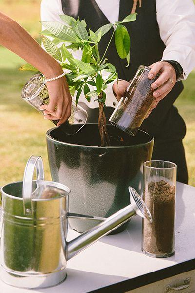 通过将植物盆栽在一起,让那些刚修好的手弄脏。然后,看着它与你的关系一起成长。