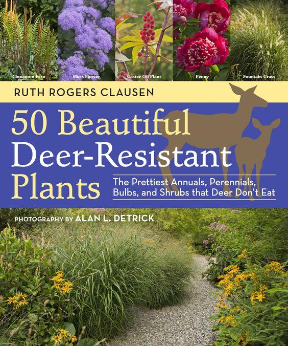 用美丽的鹿抗性植物将鹿带出您的花园。