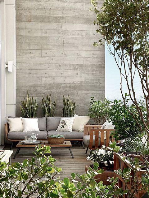 modern, lush outdoor living space