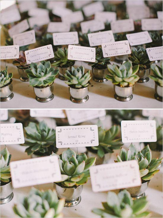 中央海岸夏季婚礼由Cameron Ingalls拍摄,带有迷人花香和青色和白色调色板。