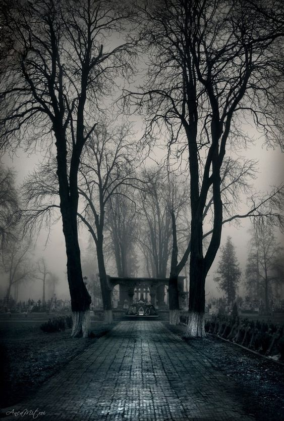 """午夜花园:在AniantMitroi的#Midnight #Garden~""""Cemetery Gates""""中,在deviantART。"""